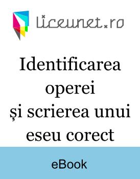 Ghid pentru identificarea operei și scrierea unui eseu corect - Subiectul III, Bacalaureatul la română