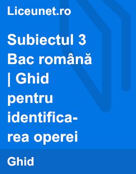 Subiectul al III-lea al Bacalaureatului la română - Ghid pentru scrierea eseului