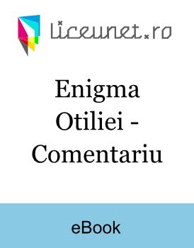 Enigma Otiliei Comentariu